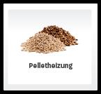 brennstoffart-pellets